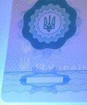 Диплом - свечение УФ (Кременчуг)
